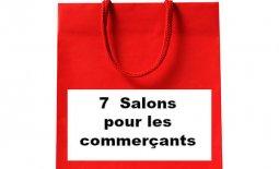8 - (FR) 7 Popular Retail Show in 2017